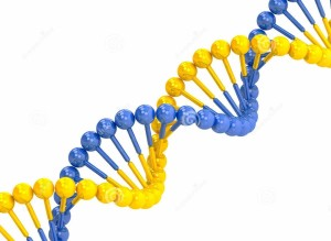 http://www.dreamstime.com/stock-photo-yellow-blue-dna-molecule-white-background-image43769380